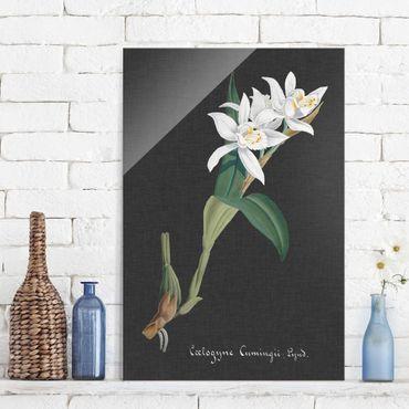 Quadro in vetro - White Orchid su lino II - Verticale 3:2