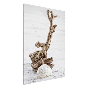 Lavagna magnetica - Bianco guscio di lumaca e Burl - Formato verticale 2:3