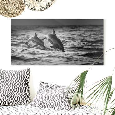 Stampa su tela - Due delfini che saltano - Orizzontale 2:1