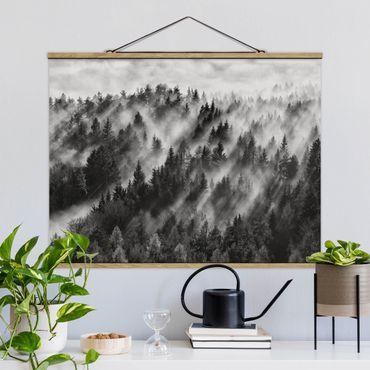 Foto su tessuto da parete con bastone - Raggi Luce nella foresta di conifere - Orizzontale 3:4