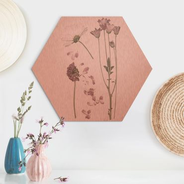 Esagono in Alu-dibond - Herbarium In Pink III
