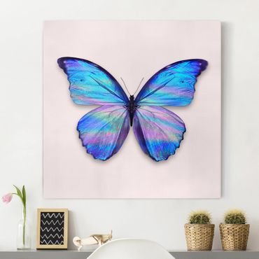 Quadri su tela - farfalla olografico