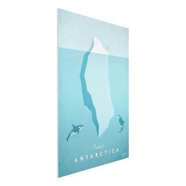 Stampa su Forex - Poster di viaggio - Antartide - Verticale 3:2