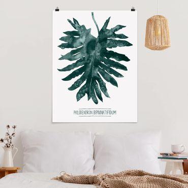 Poster - Emerald Philodendron Bipinnatifidum - Verticale 4:3