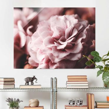 Quadro in vetro - Shabby Pink Rose pastello - Orizzontale 3:4
