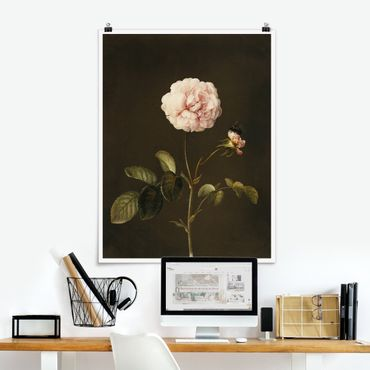 Poster - Barbara Regina Dietzsch - Rosa Gallica Con Bumblebee - Verticale 4:3