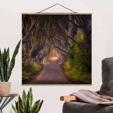 Foto su tessuto da parete con bastone - Tunnel dagli alberi - Quadrato 1:1