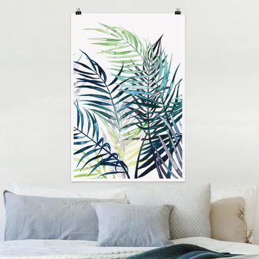 Poster - Exotic Fogliame - Palma - Verticale 3:2