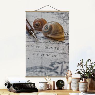 Foto su tessuto da parete con bastone - Conchiglie e filler Vintage - Verticale 3:2