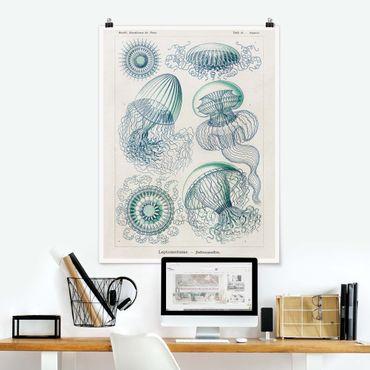 Poster - Consiglio Vintage Meduse In Blue - Verticale 4:3