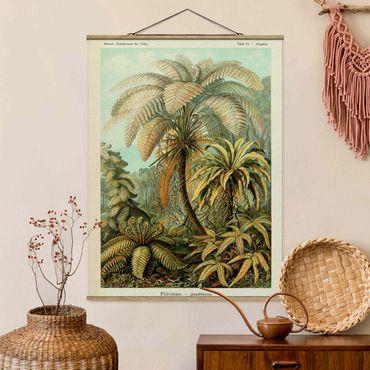 Foto su tessuto da parete con bastone - Botanica illustrazione d'epoca Foglie Felci - Verticale 4:3