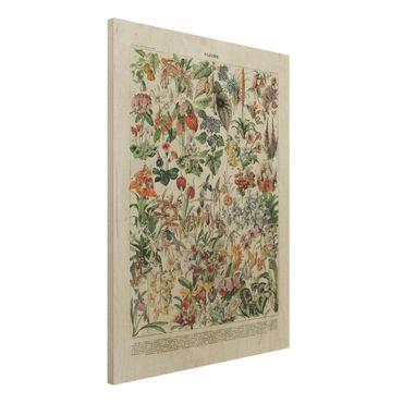 Stampa su legno - Vintage Consiglio Flowers III - Verticale 4:3
