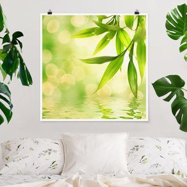 Poster - Verde Ambiance I - Quadrato 1:1