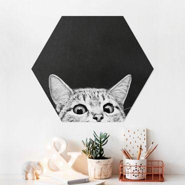Esagono in forex - Illustrazione Gatto Bianco e nero Disegno