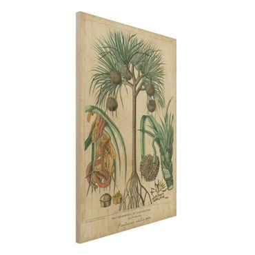 Stampa su legno - Consiglio Vintage Exotic Palms I - Verticale 3:2