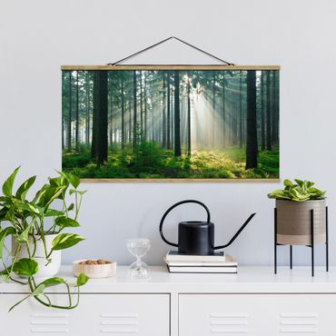 Foto su tessuto da parete con bastone - Enlightened Foresta - Orizzontale 1:2