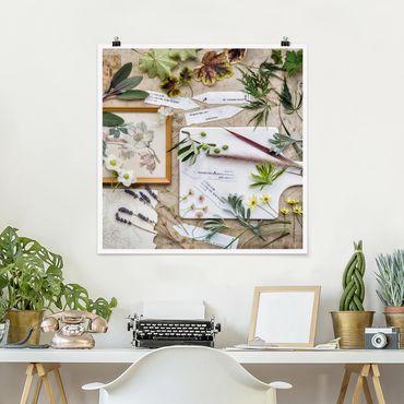 Poster - Fiori E Garden Erbe Vintage - Quadrato 1:1