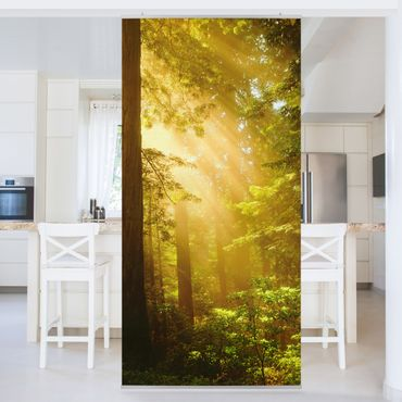 Tenda a pannello Morning Gold 250x120cm