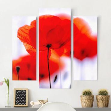 Stampa su tela 3 parti - Magic Poppies - Trittico da galleria