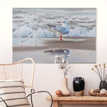 Stampa su tela - Gabbiano Sulla Spiaggia Di Fronte Al Mare - Orizzontale 2:3