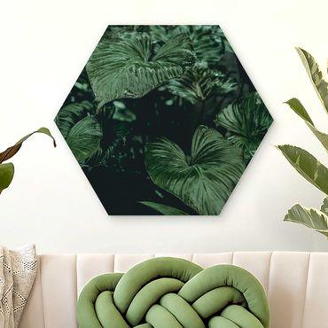 Esagono in legno - Piante Tropicali I