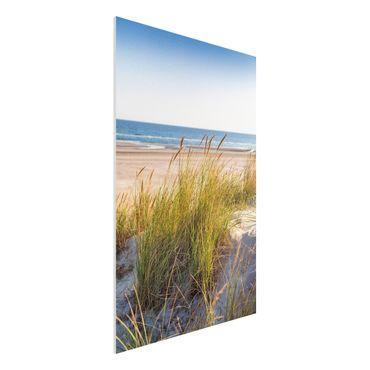 Stampa su Forex - Beach Dune Al Mare - Verticale 3:2