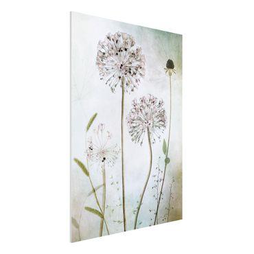 Quadro in forex - fiori Allium a pastello - Verticale 3:4