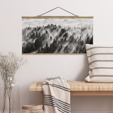 Foto su tessuto da parete con bastone - Raggi Luce nella foresta di conifere - Orizzontale 1:2