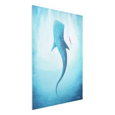 Stampa su Forex - Lo squalo balena - Verticale 4:3