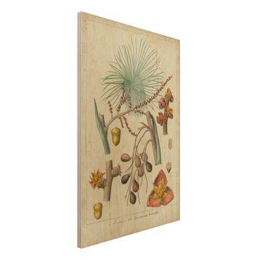 Stampa su legno - Consiglio Vintage Exotic Palms III - Verticale 3:2
