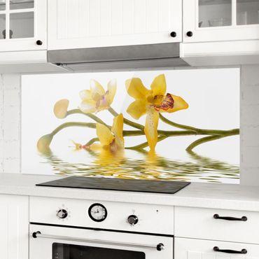 Paraschizzi in vetro - Saffron Orchid Waters - Panoramico