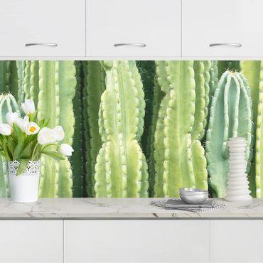 Rivestimento cucina - Parete di cactus
