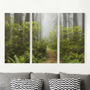 Stampa su tela 3 parti - Misty Forest Path - Verticale 2:1