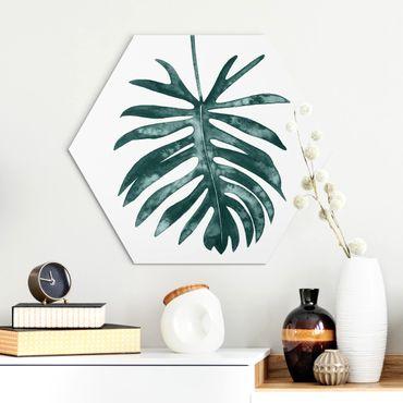 Esagono in Alu-dibond - Emerald Philodendron Angustisectum
