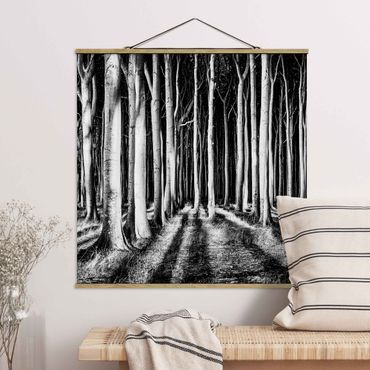 Foto su tessuto da parete con bastone - Spooky foresta - Quadrato 1:1