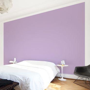 Carta da parati - Colour Lavender - Tinta unita