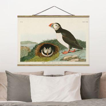 Foto su tessuto da parete con bastone - Vintage Consiglio Puffins - Orizzontale 2:3