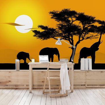 Carta da parati - African Elephant Walk