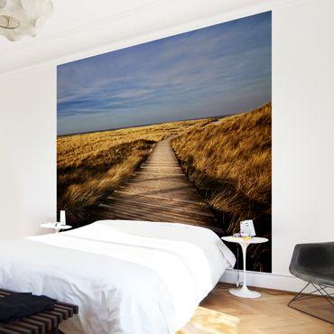 Carta da parati - Path through the dunes on Sylt