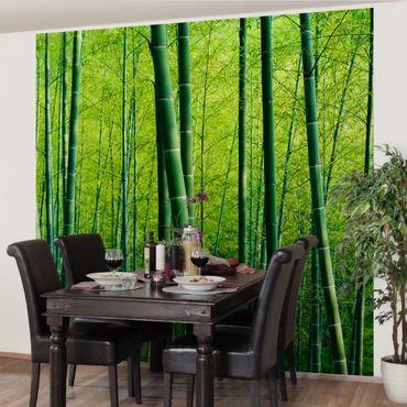 Carta da parati - Foresta di bambù