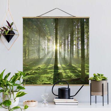 Foto su tessuto da parete con bastone - Spring Fairytale - Quadrato 1:1