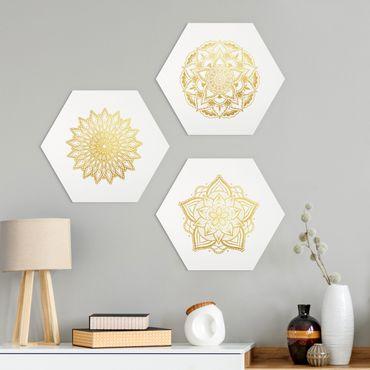 Esagono in Alu-dibond - Mandala Fiore Sun illustrazione imposta gold