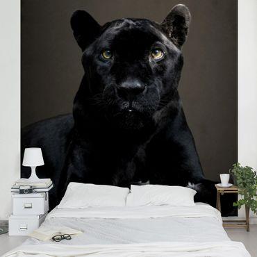 Carta da parati - Black Puma