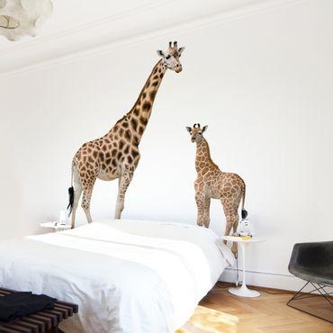 Carta da parati - Giraffe Mother and Baby