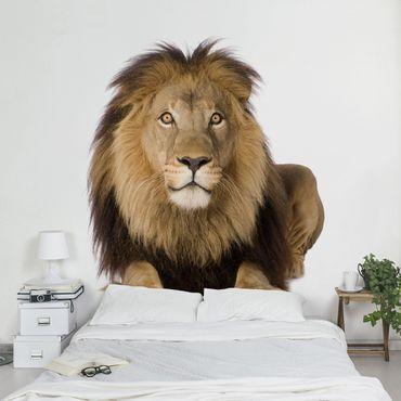 Carta da parati - King Lion II