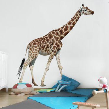 Carta da parati - Walking Giraffe
