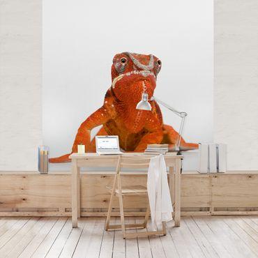 Carta da parati - Red Chameleon