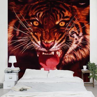 Carta da parati - Wild Tigers