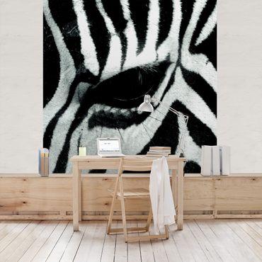 Carta da parati - Zebra Crossing
