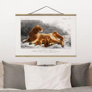 Foto su tessuto da parete con bastone - Vintage Consiglio Leonessa e Lion Cubs - Orizzontale 2:3